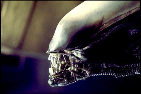 image alien face