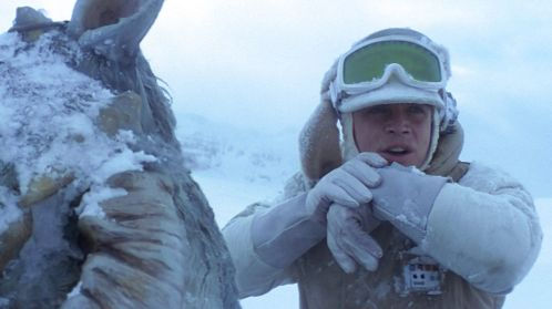Luke Skywalker on his tauntaun, calling into Rebel Base
