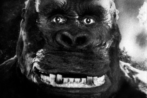 King Kong: Ready for his closeup